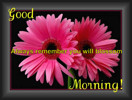 beauty tips,Good morning ~ Inspirational Quotes, Motivational Pictures and Wonderful Thoughts