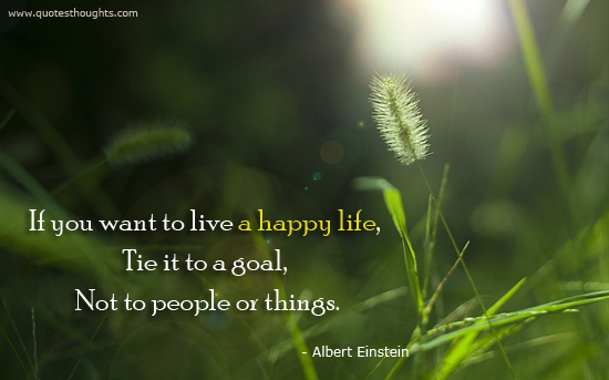 Live a happy life - Albert Einstein - Goal - People - things - Nice